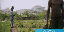 Bons Baisers d'Afrique Cotonou